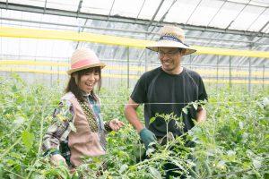 ogawafarm01