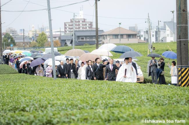 茶畑横で花嫁行列